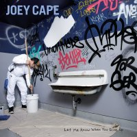 (review) Joey Cape-Let Me Know When You Give Up(Fat Wreck Chords)