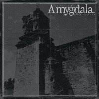 (review) Amygdala-Our Voices Will Soar Forever