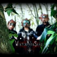 Wintermoonshade released their new single and music video!